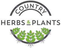 Country Herbs & Plants