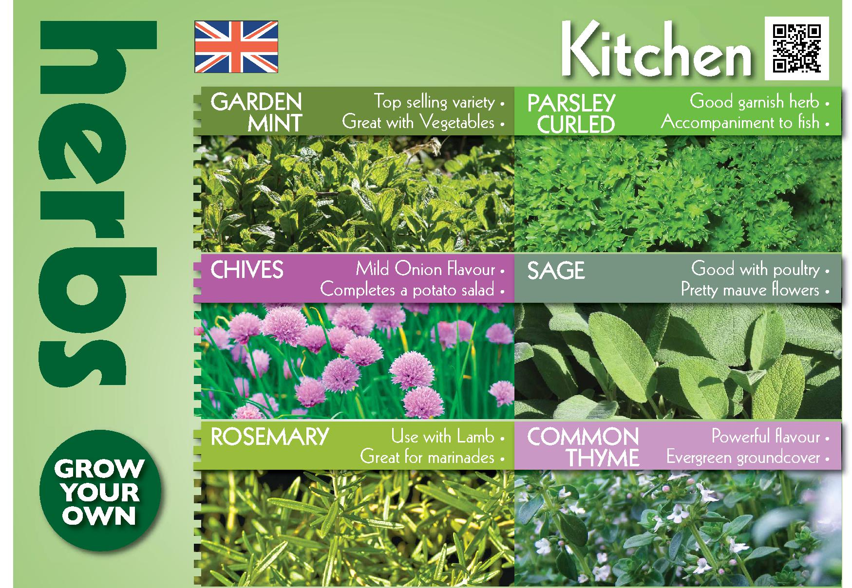 Herbs, The HTA's Plant of the Moment for the month of May